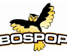 Bospop 2012