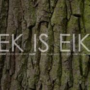 Anne Vanschothorst – Ek Is Eik