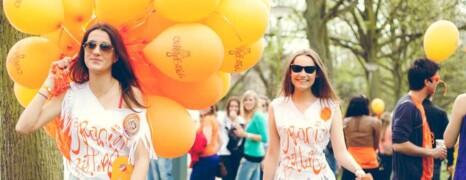 Festival Oranjebitter