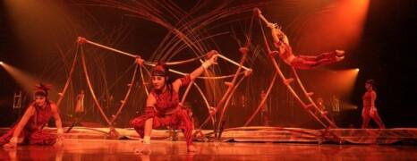 AMA LUNA Cirque Du Soleil