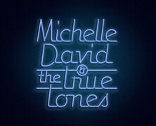 Michelle David & The True-tones