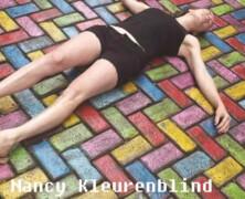 Nancy Kleurenblind & De Zingende Roadie