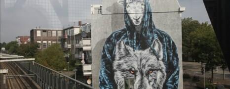 POW! WOW! Street Art Festival